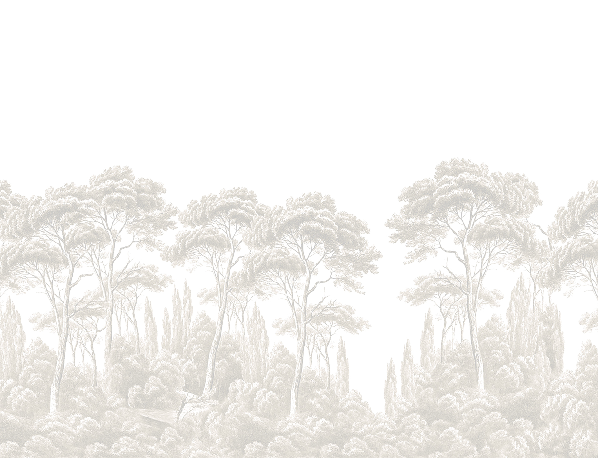Fondo pini Forte dei Marmi